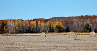 Autumn Field with Bails of Hay