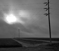Fog and Power Lines
